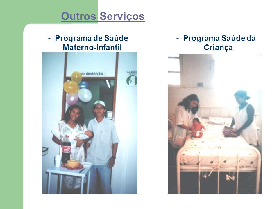 Outros Serviços - Programa de Saúde Materno-Infantil