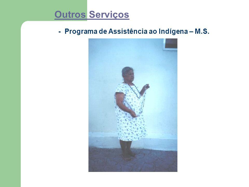 Outros Serviços - Programa de Assistência ao Indígena – M.S.