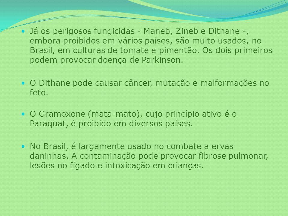 Já os perigosos fungicidas - Maneb, Zineb e Dithane -, embora proibidos em vários países, são muito usados, no Brasil, em culturas de tomate e pimentão. Os dois primeiros podem provocar doença de Parkinson.