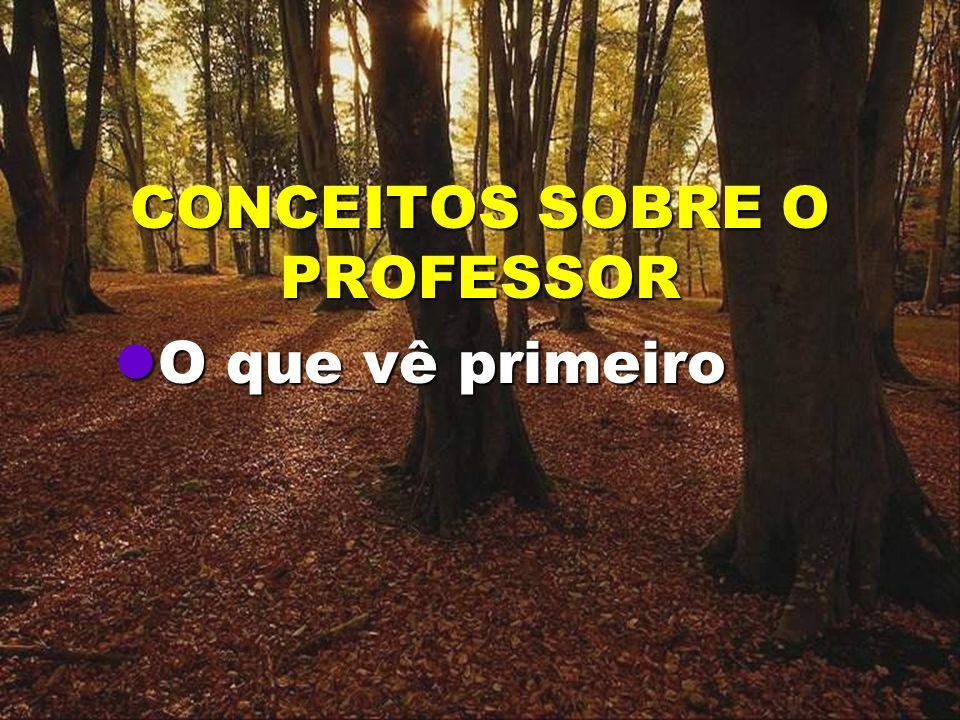 CONCEITOS SOBRE O PROFESSOR