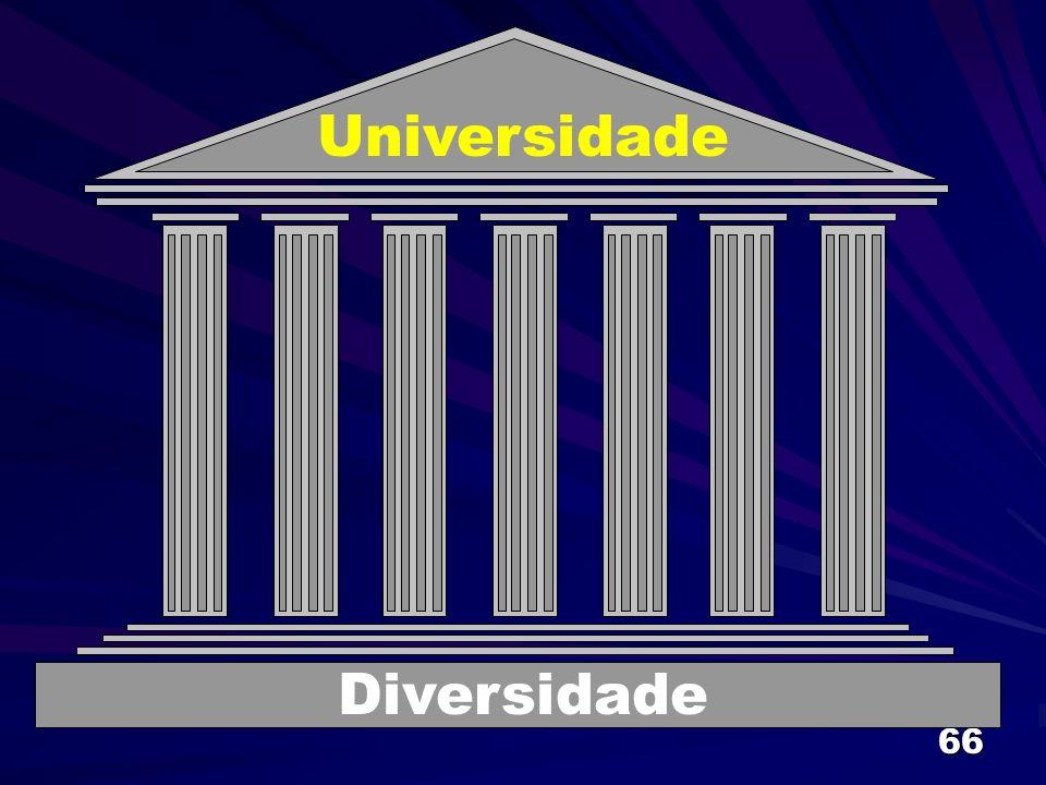Universidade Diversidade