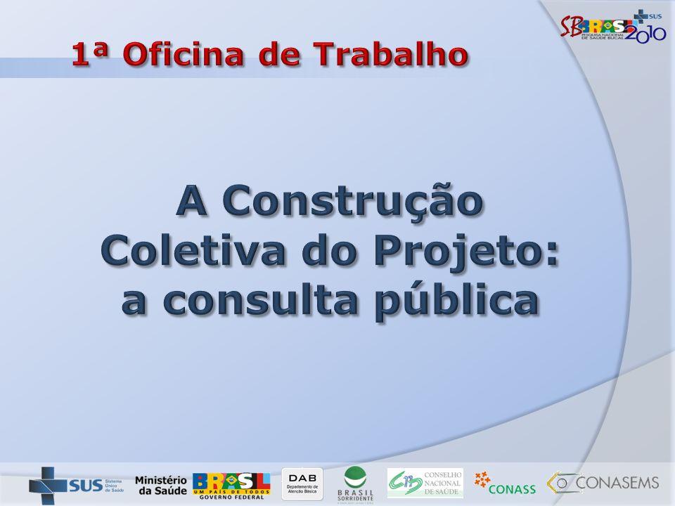 A Construção Coletiva do Projeto: a consulta pública