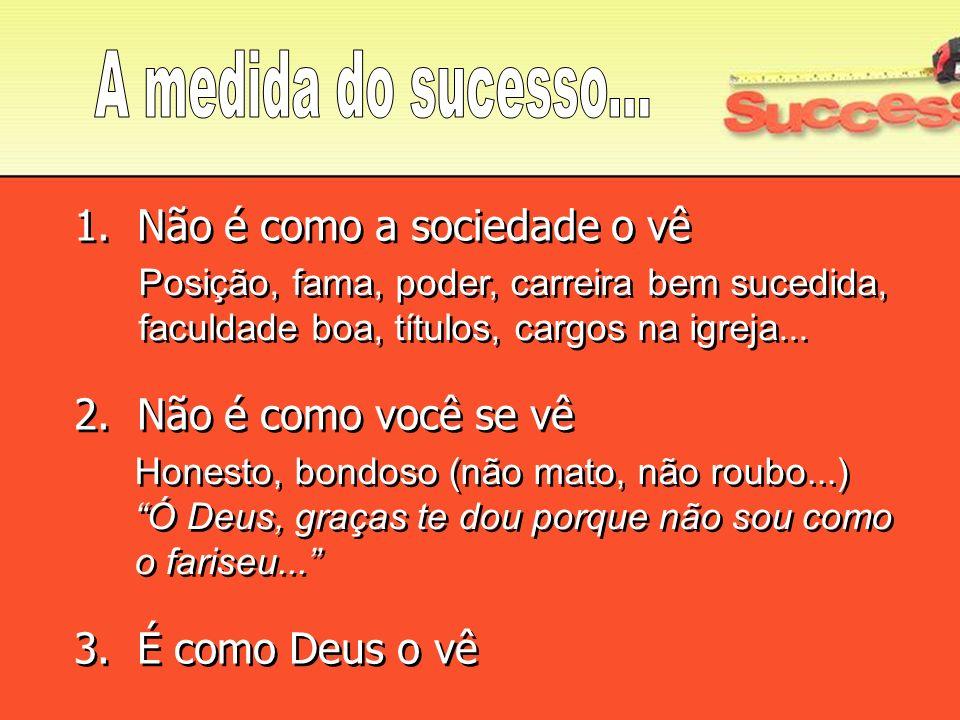 A medida do sucesso... 1. Não é como a sociedade o vê