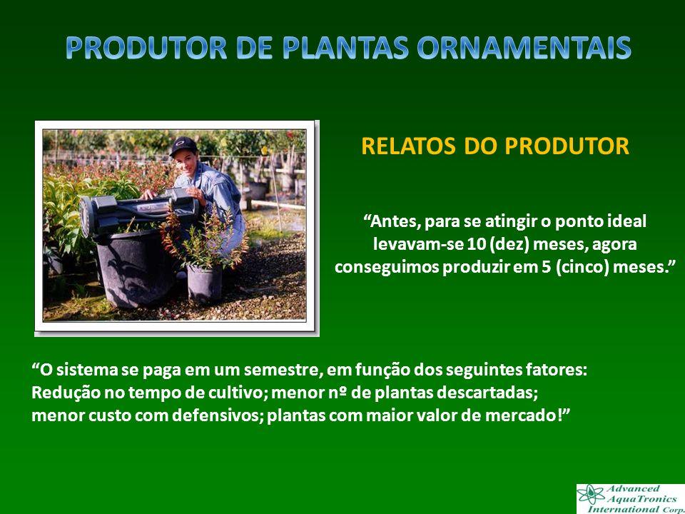 PRODUTOR DE PLANTAS ORNAMENTAIS