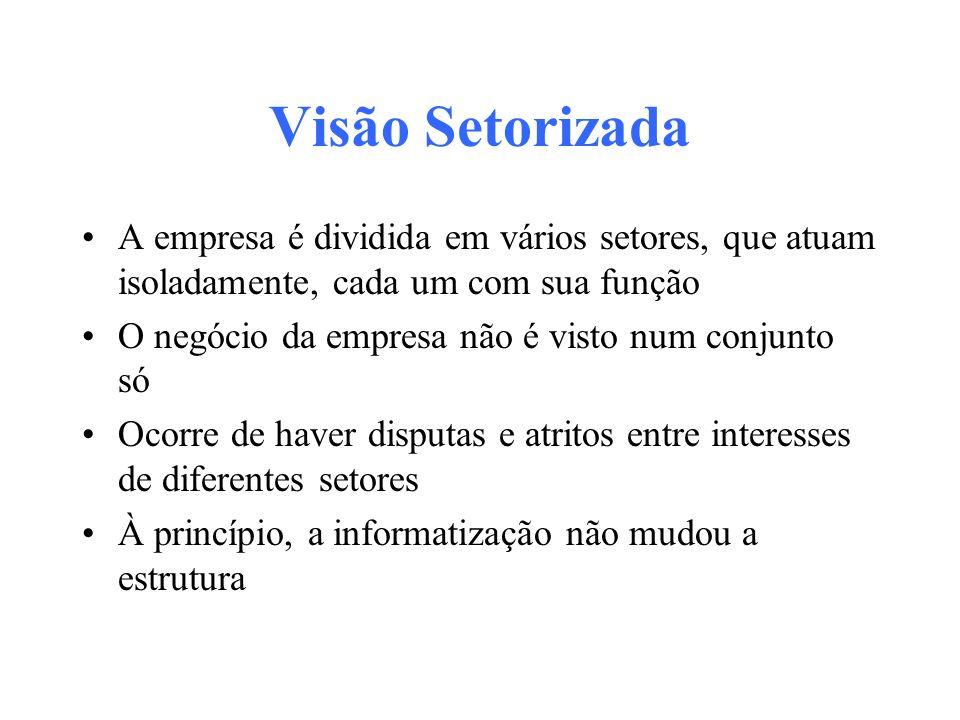 Visão Setorizada A empresa é dividida em vários setores, que atuam isoladamente, cada um com sua função.