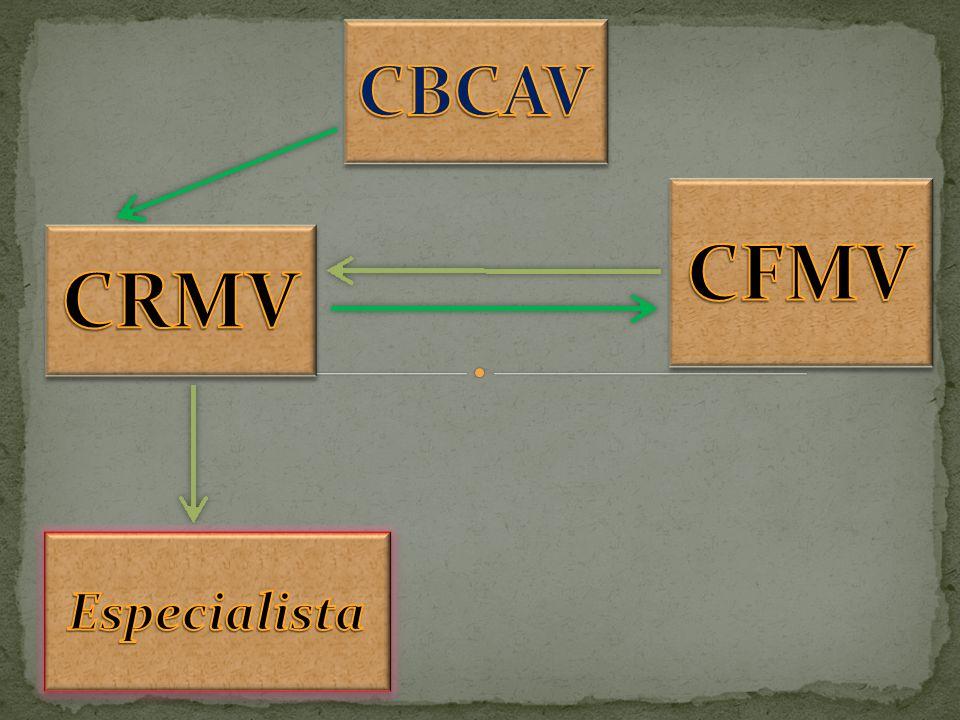 CBCAV CFMV CRMV Especialista