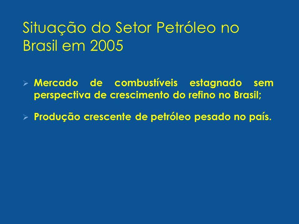 Situação do Setor Petróleo no Brasil em 2005
