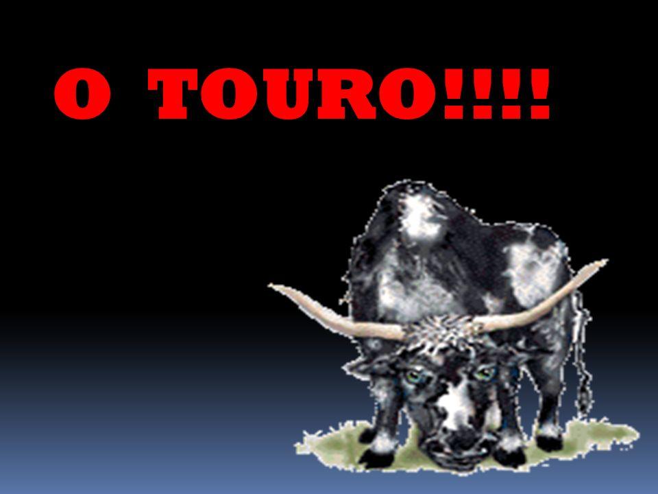O TOURO!!!!