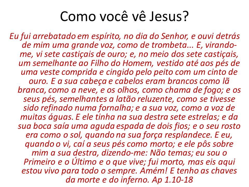 Como você vê Jesus