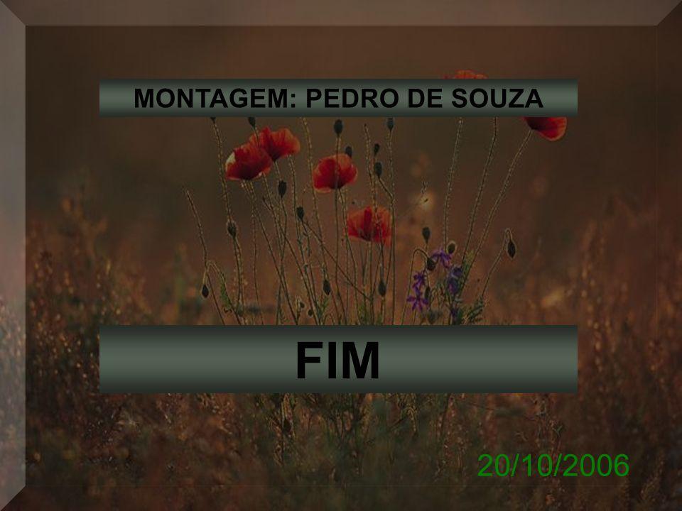 MONTAGEM: PEDRO DE SOUZA