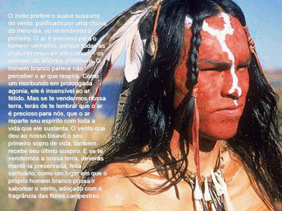 O índio prefere o suave sussurro do vento, purificado por uma chuva do meio-dia, ou recendendo o pinheiro.