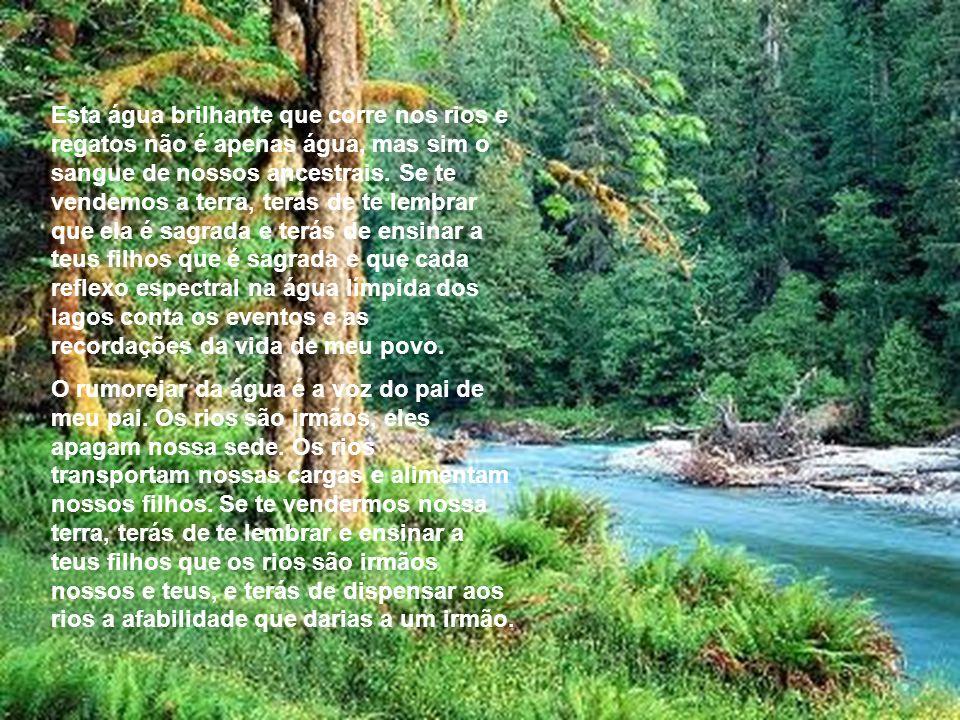 Esta água brilhante que corre nos rios e regatos não é apenas água, mas sim o sangue de nossos ancestrais. Se te vendemos a terra, terás de te lembrar que ela é sagrada e terás de ensinar a teus filhos que é sagrada e que cada reflexo espectral na água límpida dos lagos conta os eventos e as recordações da vida de meu povo.