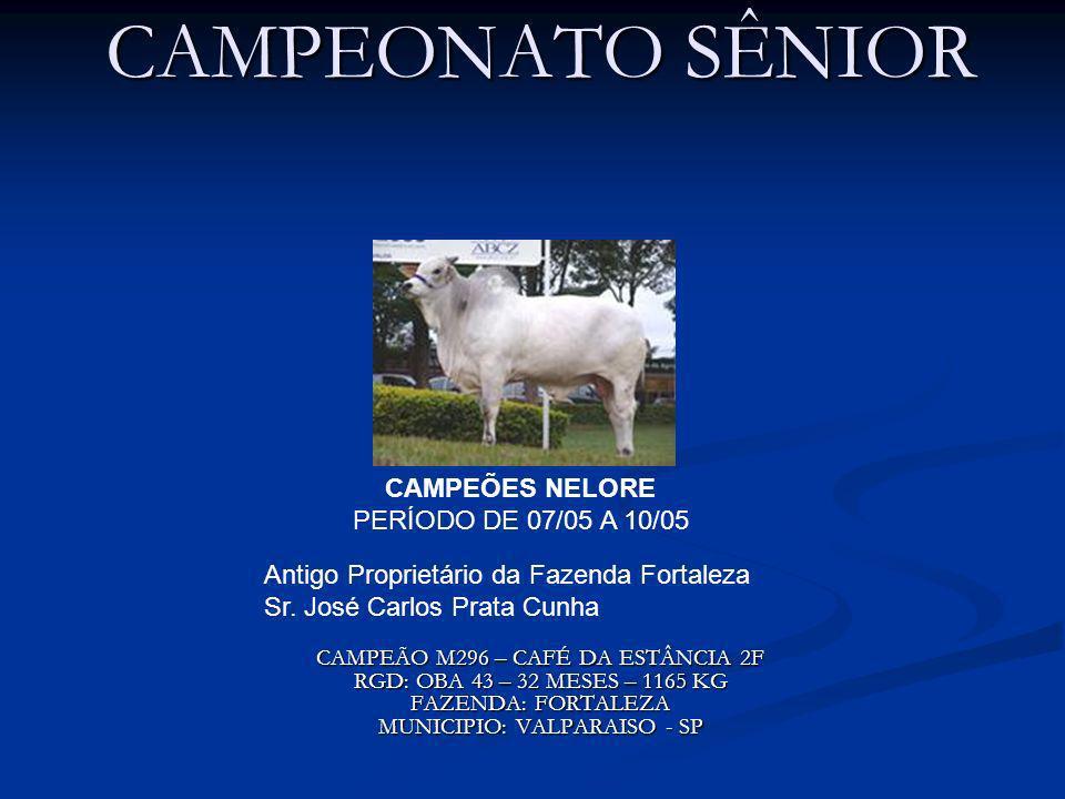 CAMPEÕES NELORE PERÍODO DE 07/05 A 10/05