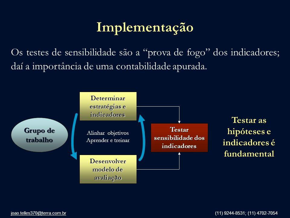 Implementação Os testes de sensibilidade são a prova de fogo dos indicadores; daí a importância de uma contabilidade apurada.
