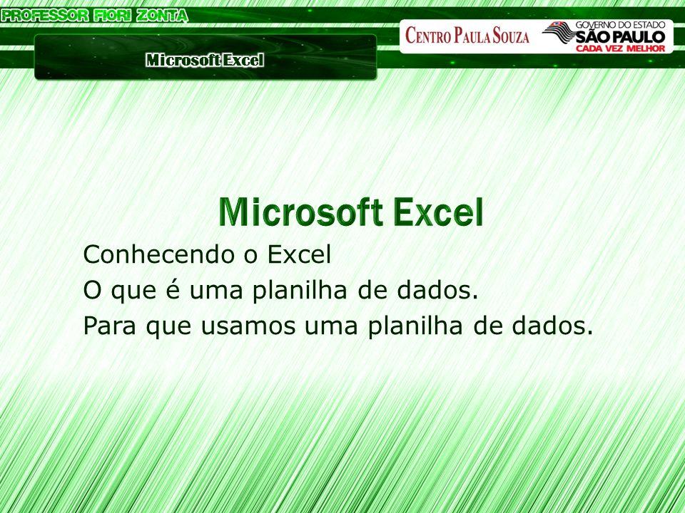 Microsoft Excel Conhecendo o Excel O que é uma planilha de dados.