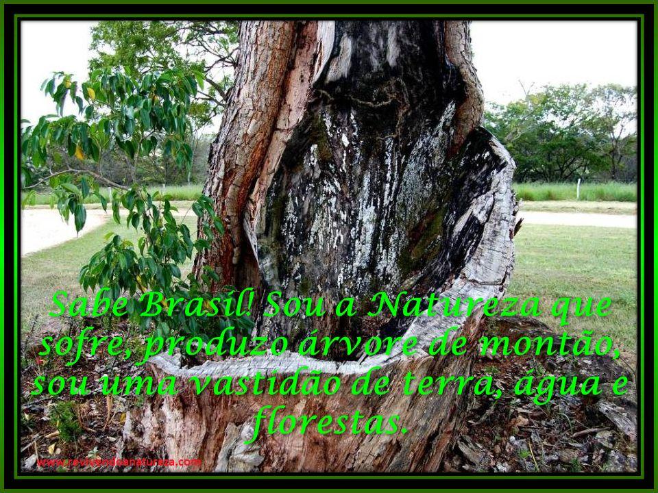 Sabe Brasil! Sou a Natureza que sofre, produzo árvore de montão, sou uma vastidão de terra, água e florestas.