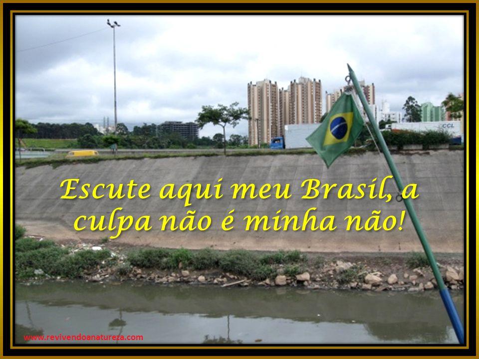 Escute aqui meu Brasil, a culpa não é minha não!