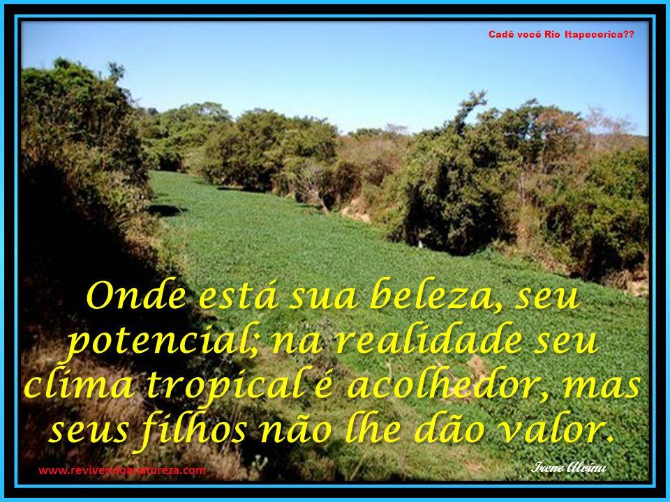 Cadê você Rio Itapecerica