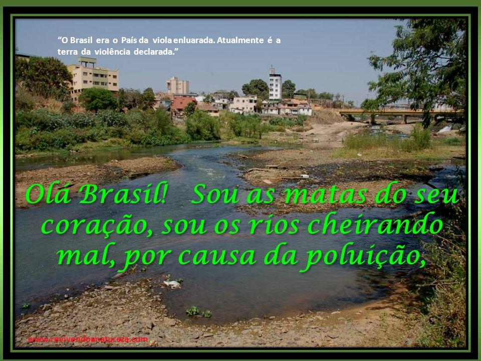 O Brasil era o País da viola enluarada