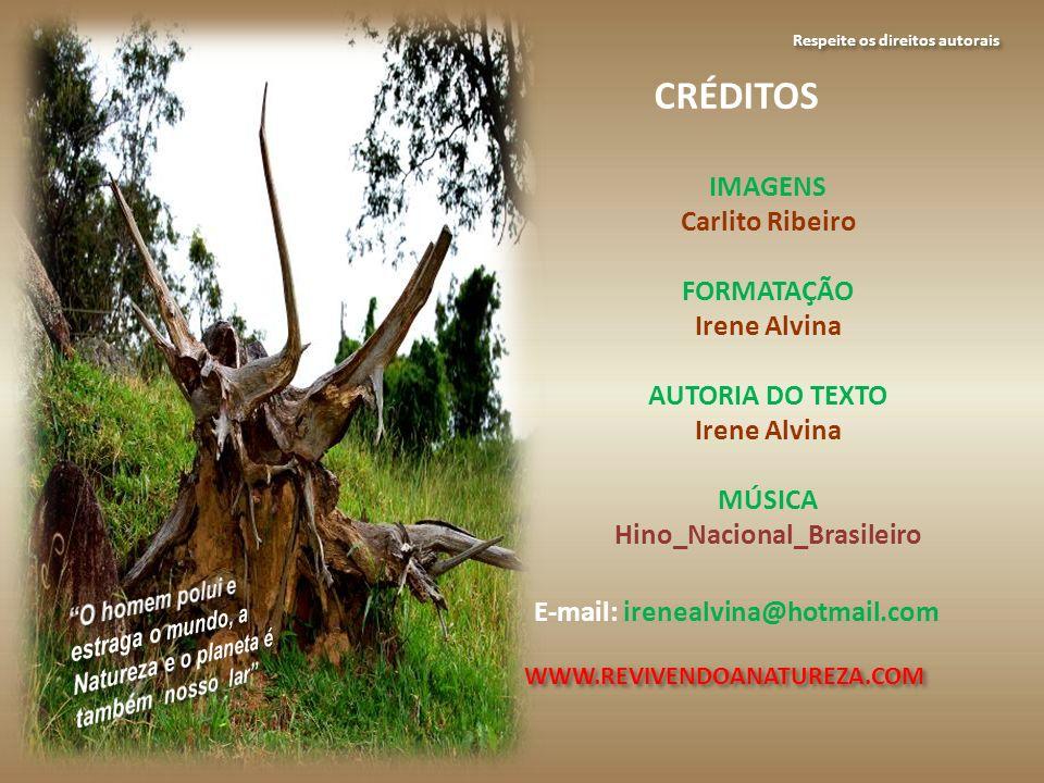 Respeite os direitos autorais Hino_Nacional_Brasileiro