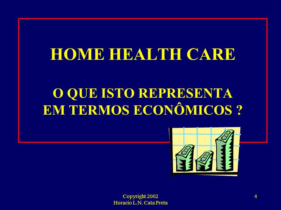 HOME HEALTH CARE O QUE ISTO REPRESENTA EM TERMOS ECONÔMICOS