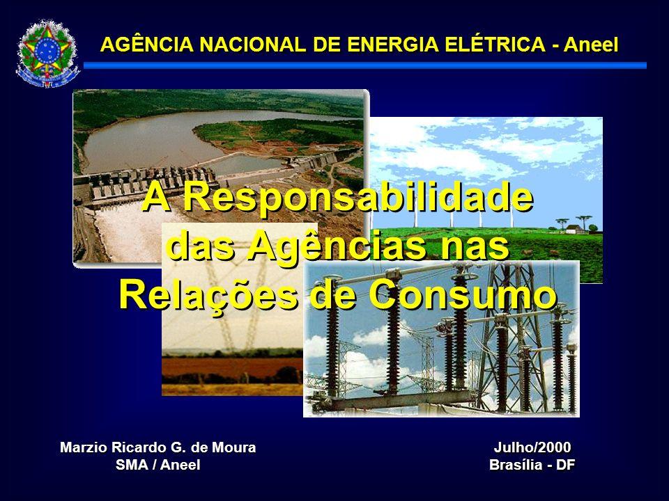 A Responsabilidade das Agências nas Relações de Consumo