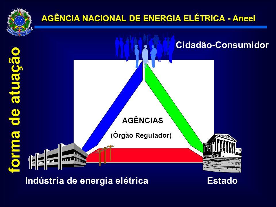 forma de atuação Cidadão-Consumidor Indústria de energia elétrica