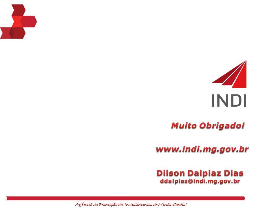 Muito Obrigado! www.indi.mg.gov.br Dilson Dalpiaz Dias