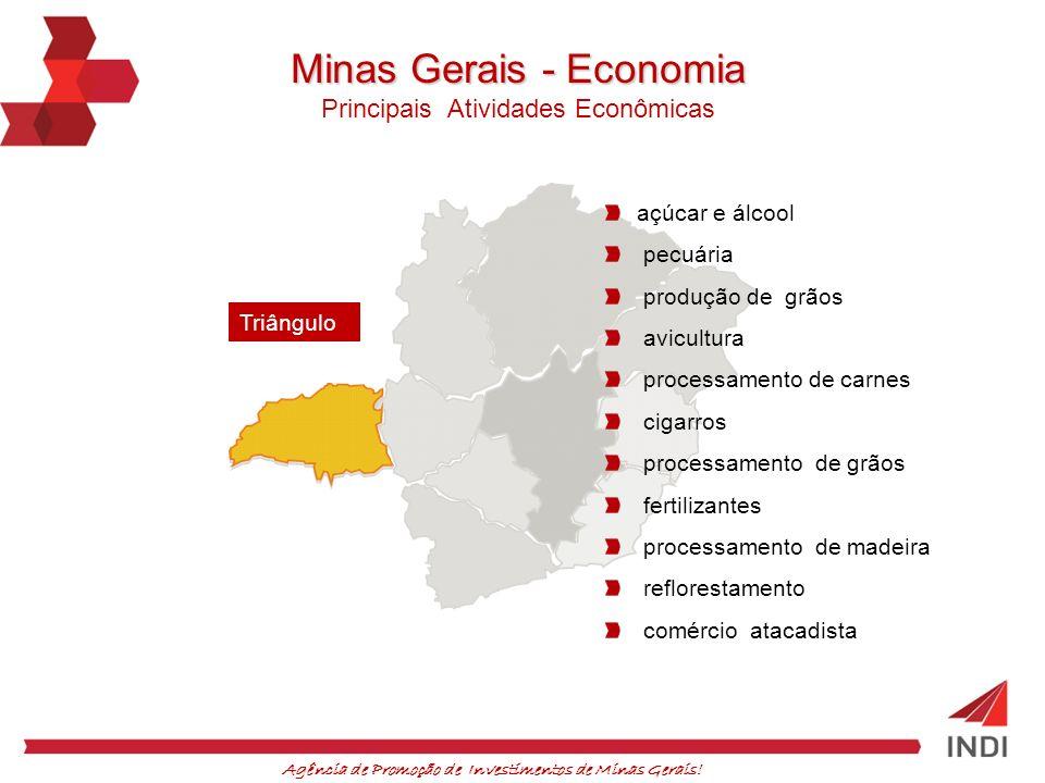 Minas Gerais - Economia
