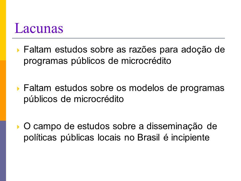 Lacunas Faltam estudos sobre as razões para adoção de programas públicos de microcrédito.