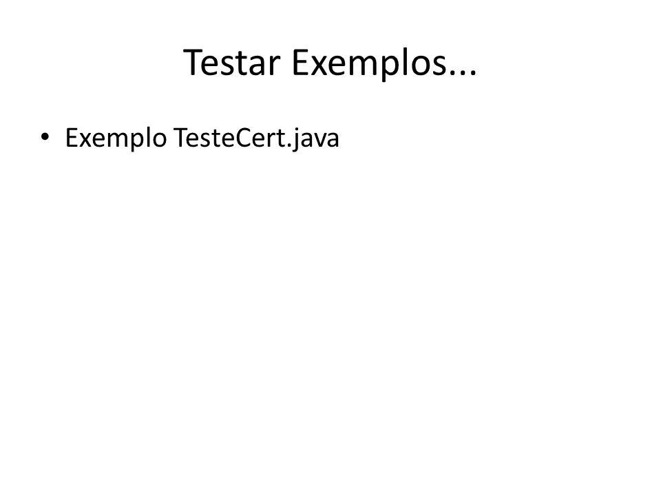 Testar Exemplos... Exemplo TesteCert.java