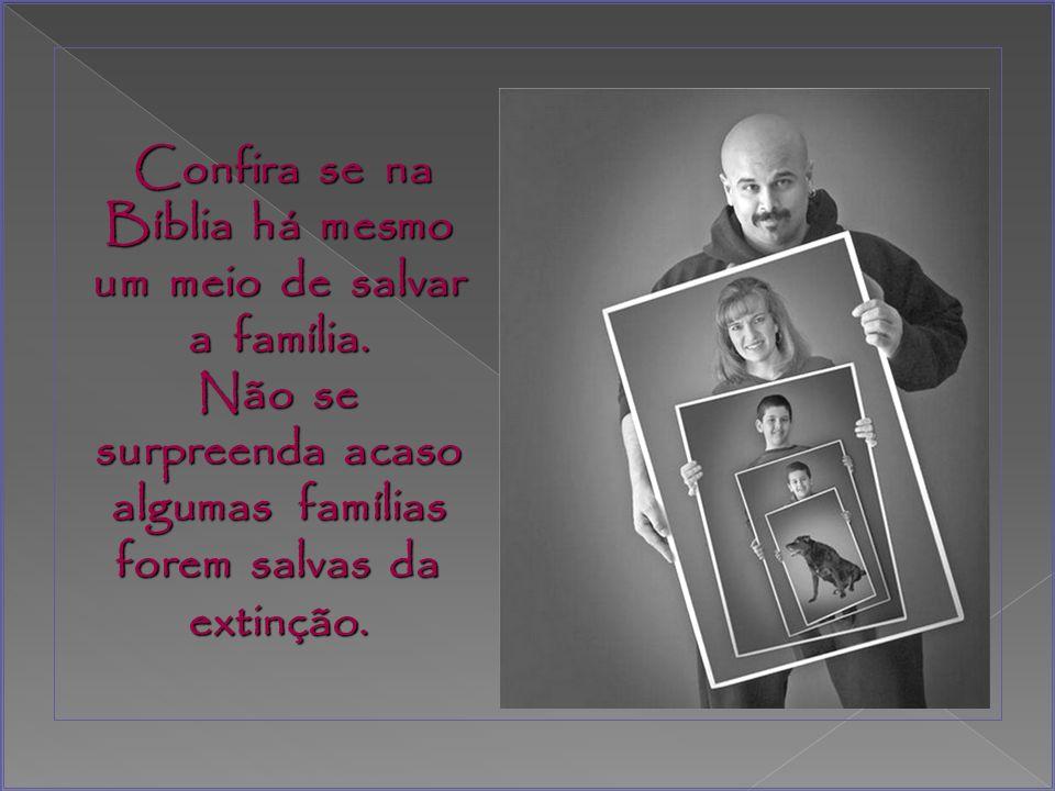 Confira se na Bíblia há mesmo um meio de salvar a família.