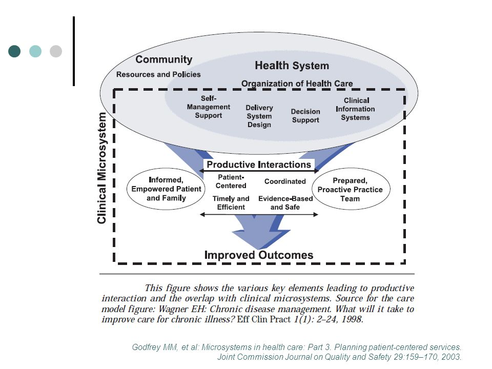 Godfrey MM, et al: Microsystems in health care: Part 3