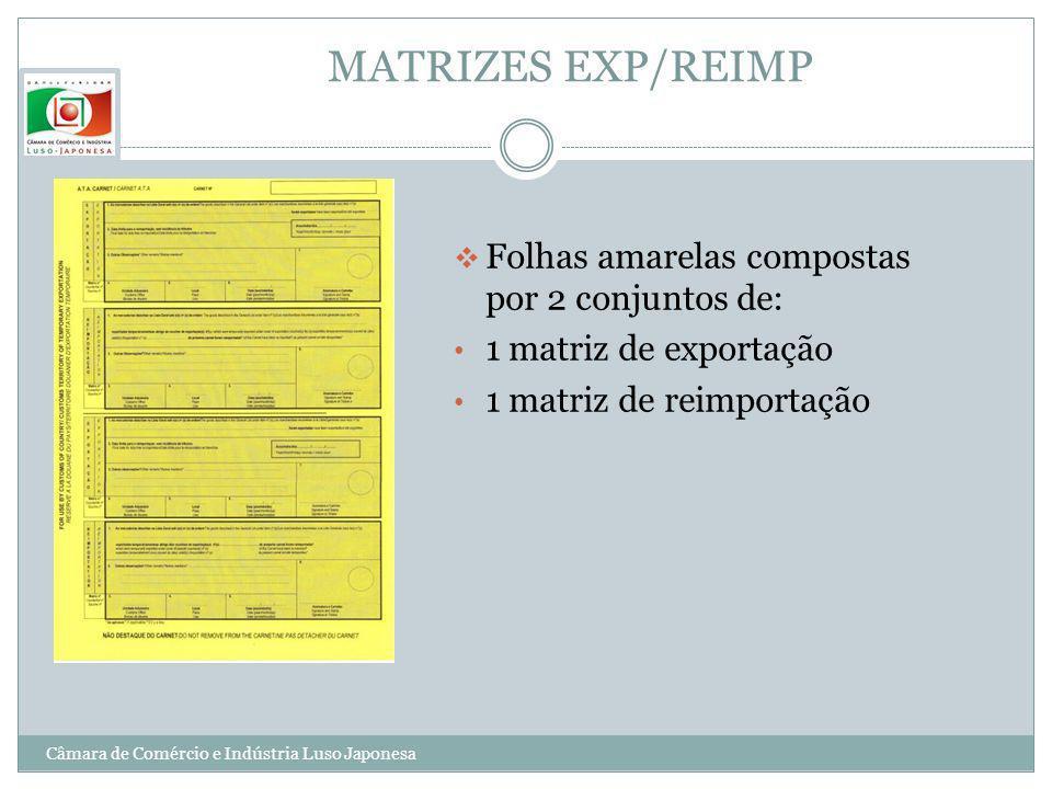 MATRIZES EXP/REIMP Folhas amarelas compostas por 2 conjuntos de: