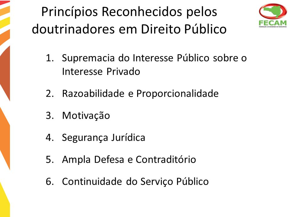 Princípios Reconhecidos pelos doutrinadores em Direito Público