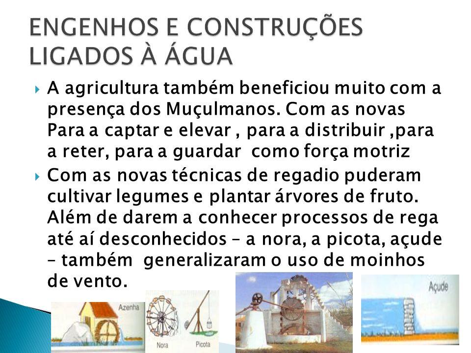ENGENHOS E CONSTRUÇÕES LIGADOS À ÁGUA