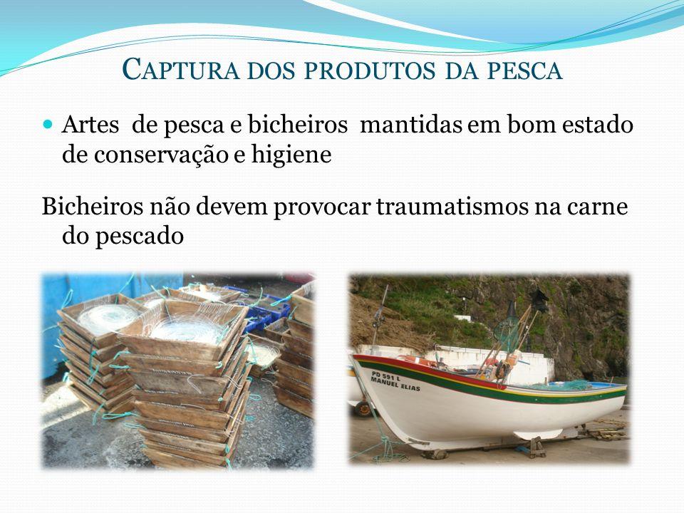 Captura dos produtos da pesca