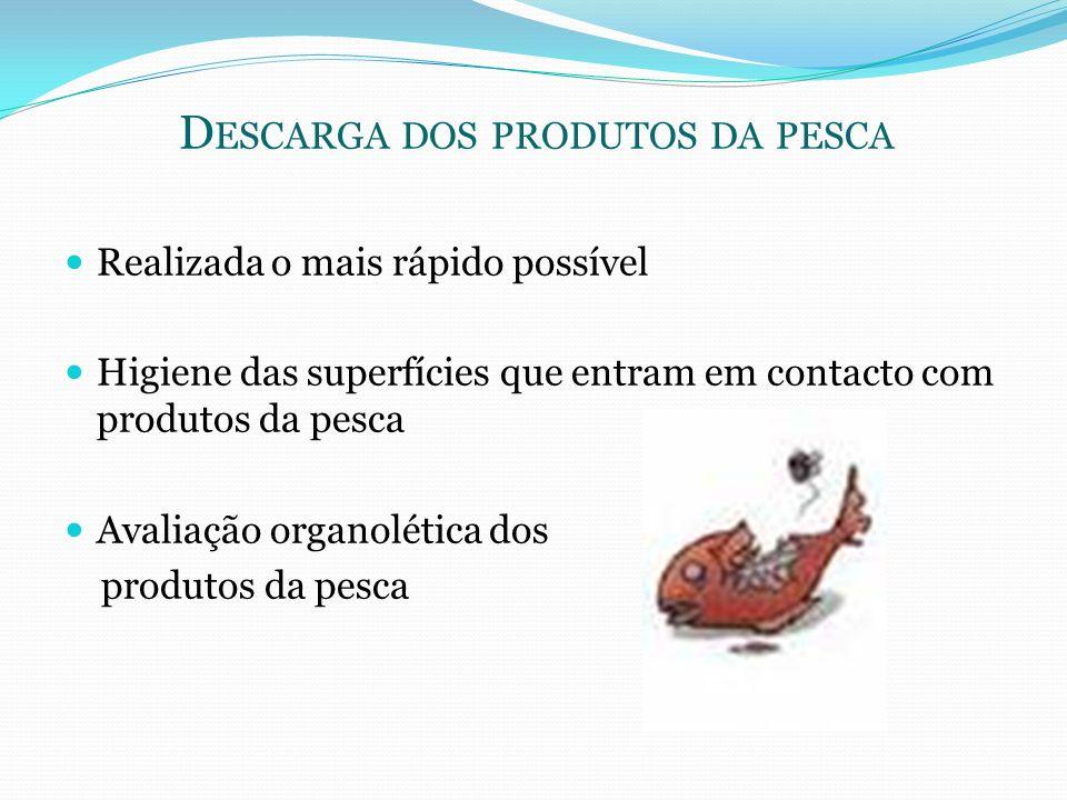 Descarga dos produtos da pesca