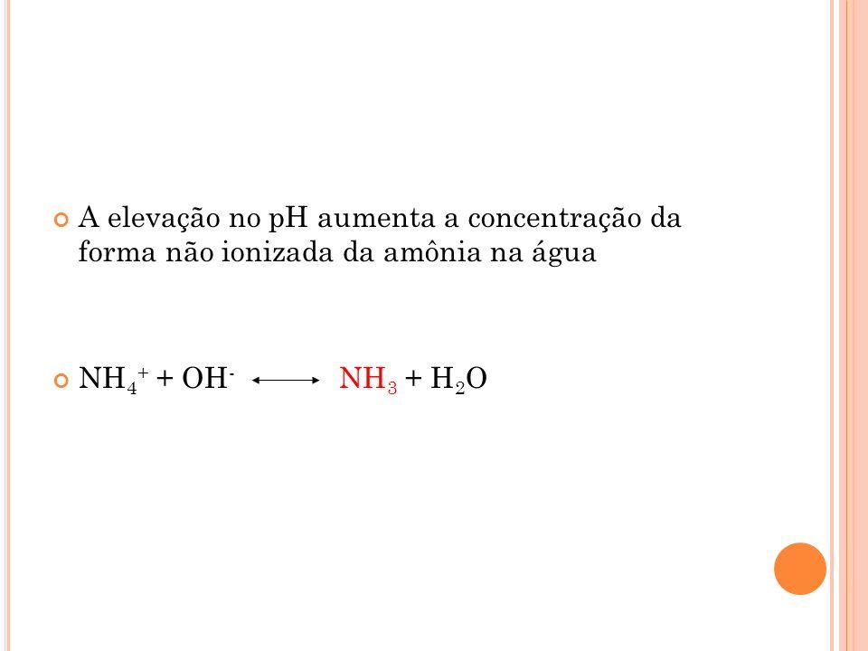 A elevação no pH aumenta a concentração da forma não ionizada da amônia na água