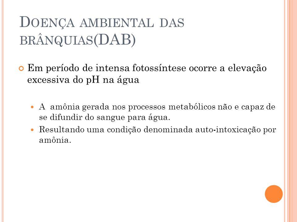 Doença ambiental das brânquias(DAB)