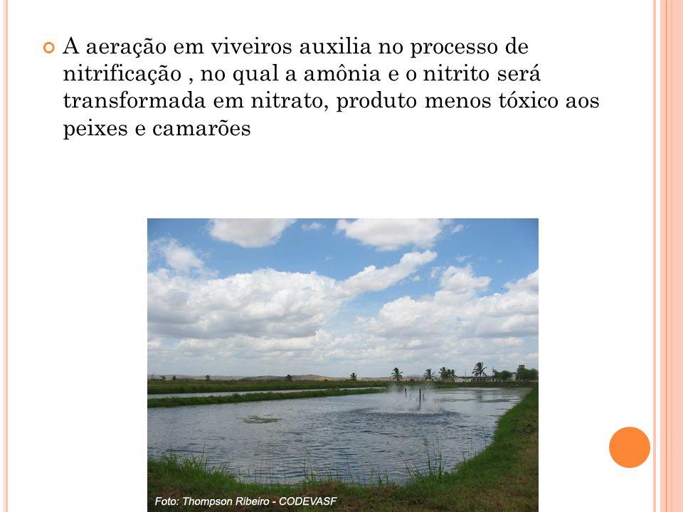 A aeração em viveiros auxilia no processo de nitrificação , no qual a amônia e o nitrito será transformada em nitrato, produto menos tóxico aos peixes e camarões