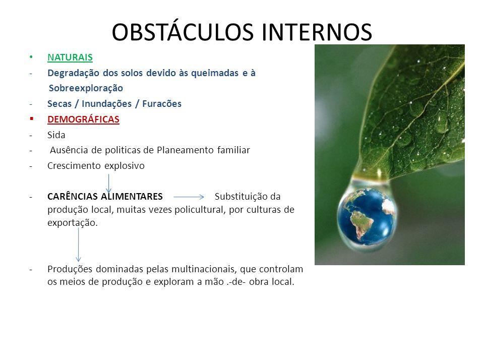 OBSTÁCULOS INTERNOS NATURAIS