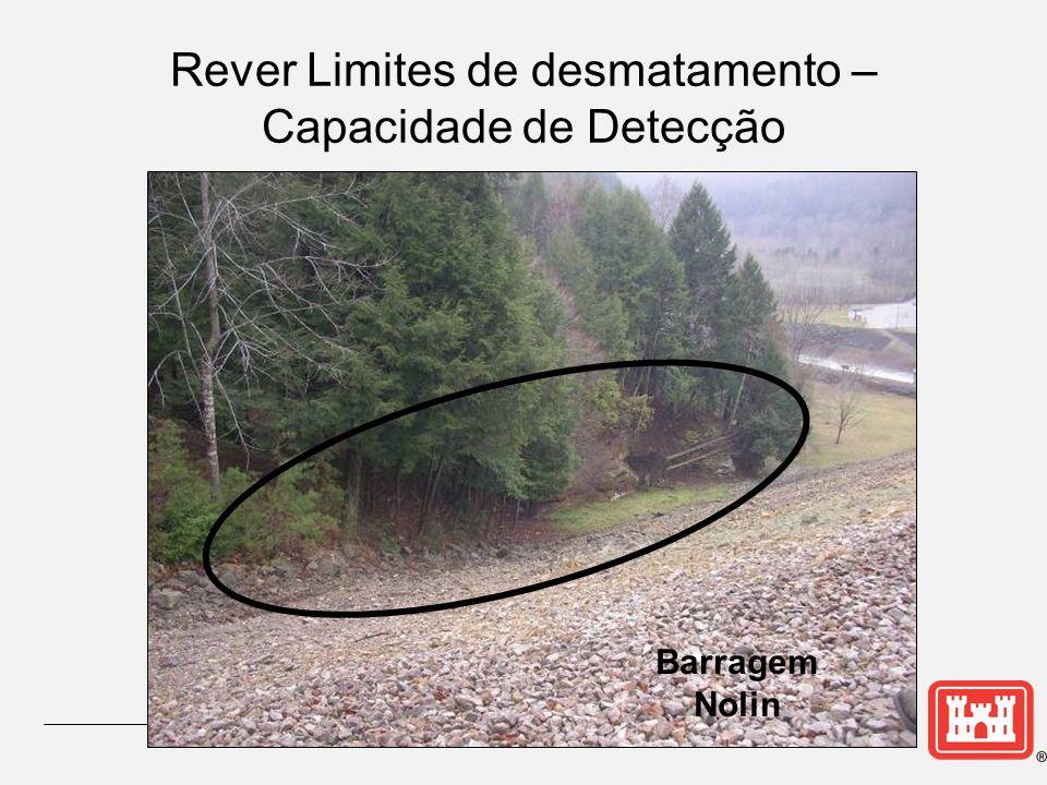 Rever Limites de desmatamento – Capacidade de Detecção
