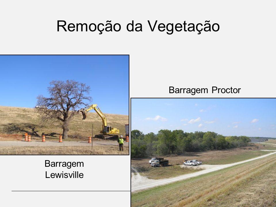 Remoção da Vegetação Barragem Proctor Barragem Lewisville