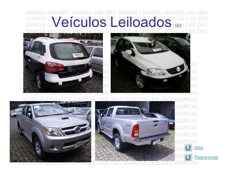 Veículos Leiloados (c)