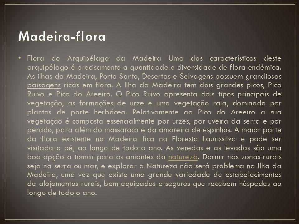 Madeira-flora