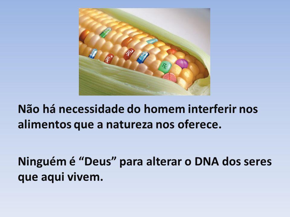 Não há necessidade do homem interferir nos alimentos que a natureza nos oferece.