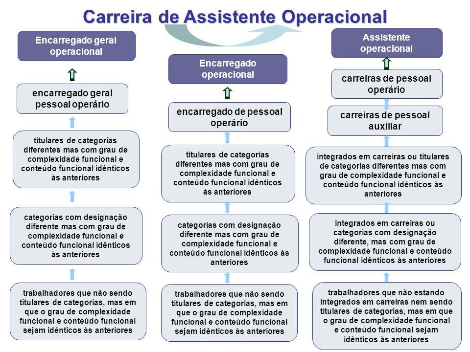 Carreira de Assistente Operacional