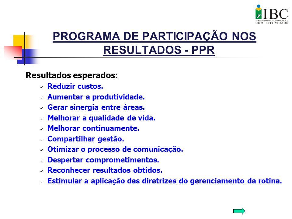 PROGRAMA DE PARTICIPAÇÃO NOS RESULTADOS - PPR