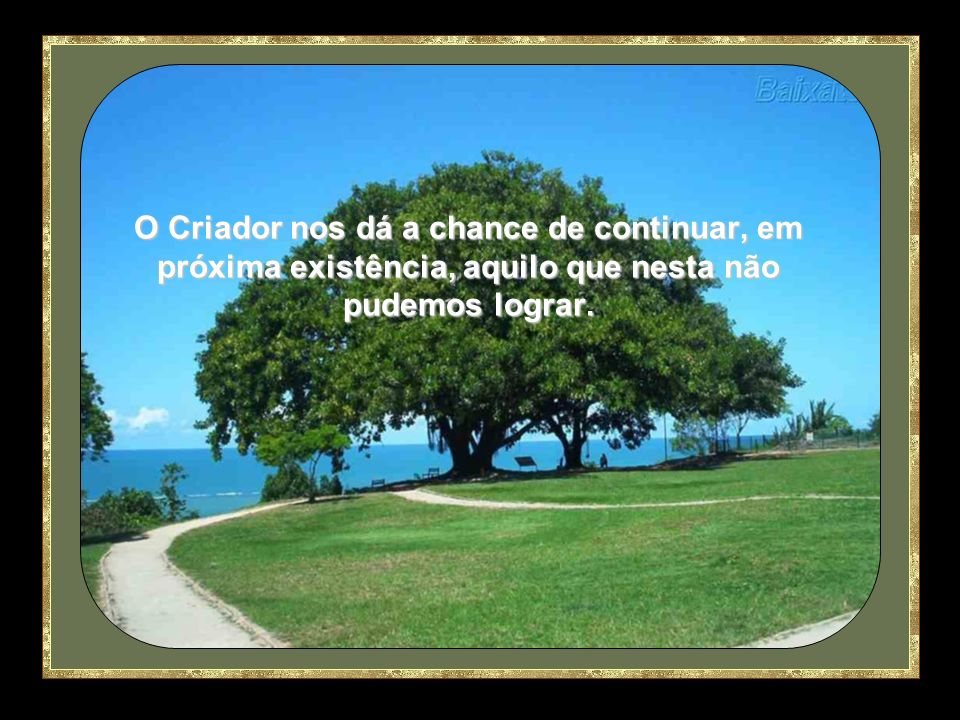 O Criador nos dá a chance de continuar, em próxima existência, aquilo que nesta não pudemos lograr.